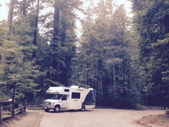 RV in redwoods (550)